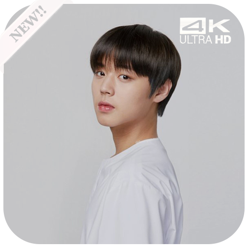 App Insights Wanna One Park Jihoon Wallpaper Kpop Apptopia