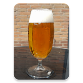 ALE - Alcohol Level Estimator