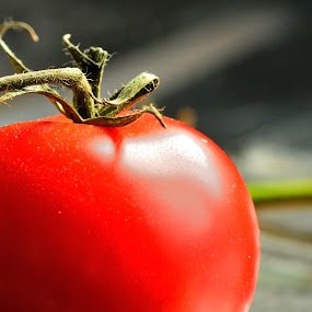 tomato by Billy Kennedy - Nature Up Close Gardens & Produce ( red, round, tomato, vegetable )