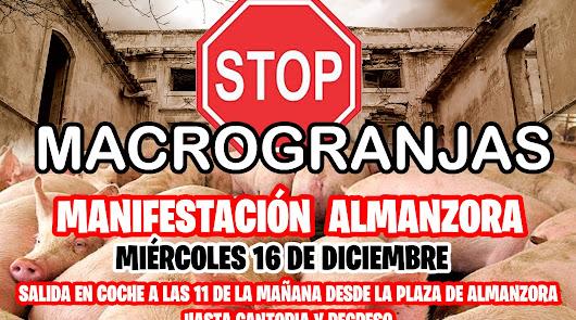 Los vecinos de Almanzora se movilizan contra una nueva macrogranja porcina