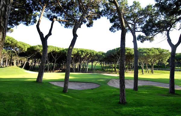 La Costa Hotel Golf & Beach Resort