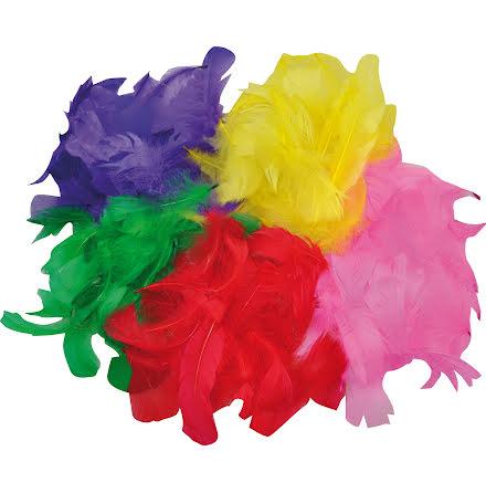 Fjädrar mixade färger 200/fp