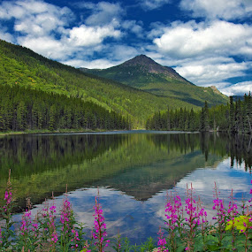 Northern Paradise by Pam Mullins - Landscapes Waterscapes ( wilderness, mountains, reflection, nature, canada, beautiful, lake, flowers, pretty, bc,  )