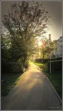 Photo: Calea Victoriei - Alei in Mr.1- Mr.2 - 2017.09.16 - rasarit de soare