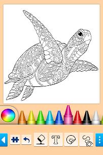Mandala Coloring Pages 9