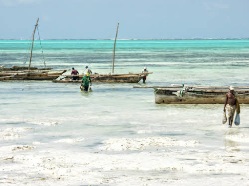 Things to Do in Zanzibar Stone Town and Beyond // Traditional Fishing Boats in Jambiani