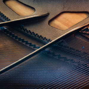 Piano Strings.coldresize1600 and 72ppi.jpg