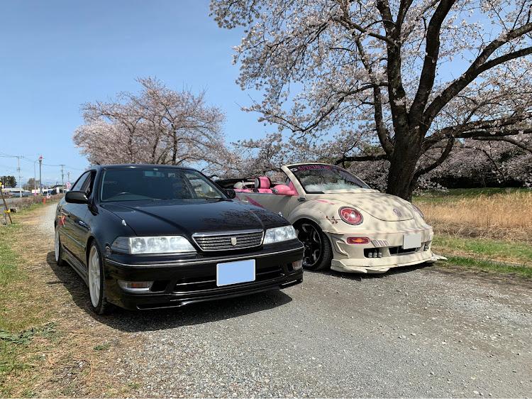 マークII JZX100のこだま千本桜,小川町,メデューサ号,桜とコラボ,SSS(saitama street stage)に関するカスタム&メンテナンスの投稿画像6枚目