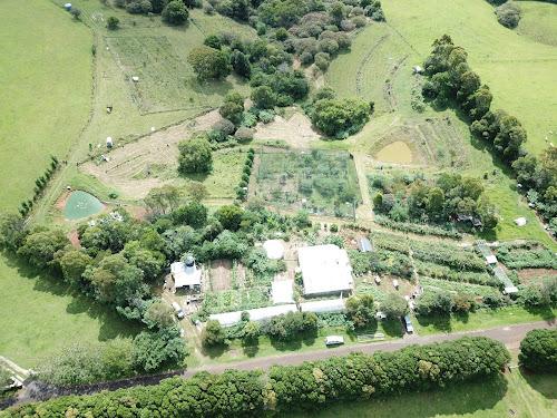 80 acre permaculture long term lease Dorrigo NSW