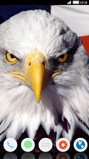 Bald Eagle C Launcher Theme