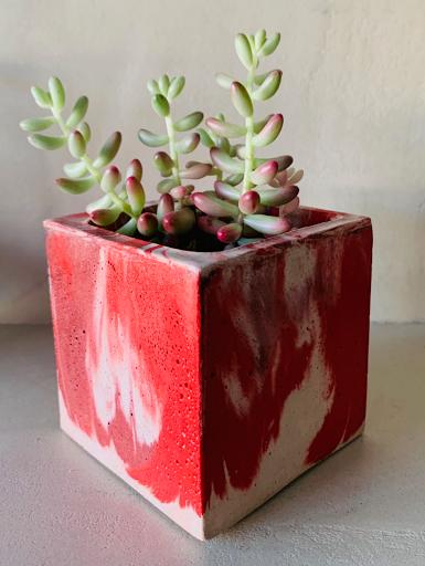 pot en béton à plante d'intérieur