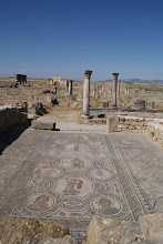Photo: Roman ruins and mosaic tile, Volubilis