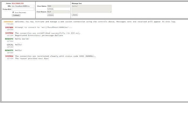 Web Socket Client