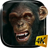 Talking Monkey Live Wallpaper