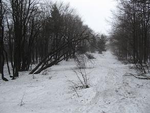 Photo: 08.O dziwo dalej pogoda się poprawia i z każdą godziną jest lepiej... A my podążamy słowackim, zielonym szlakiem, którzy przechodzi przez wszystkie szczyty Worka Raczańskiego.