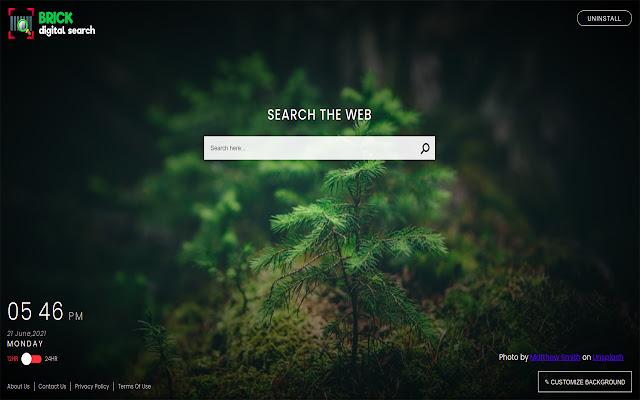 Brick Digital Search