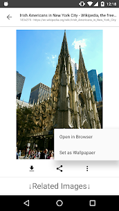 Image Search – ImageSearchMan Apk Download for Android 4