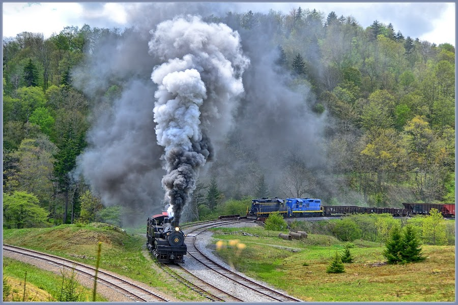 Great Train Race  by Will Zook - Transportation Trains