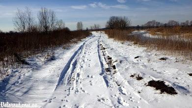 Photo: Ирпень зимой