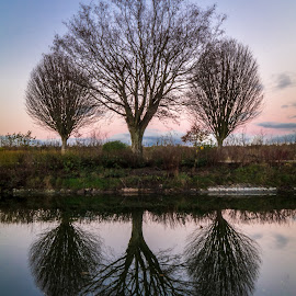 Time to reflect by Danny Charge - City,  Street & Park  City Parks ( love, blue sky, reflect, reflection, blue, waterscapes, waterscape, reflections, belfast, water )