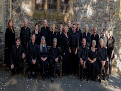 Chamber choir launches its own website