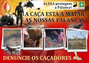Photo: An awareness poster Um poster de sensibilização