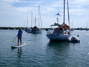 Photo: Anne headed out on her paddleboard