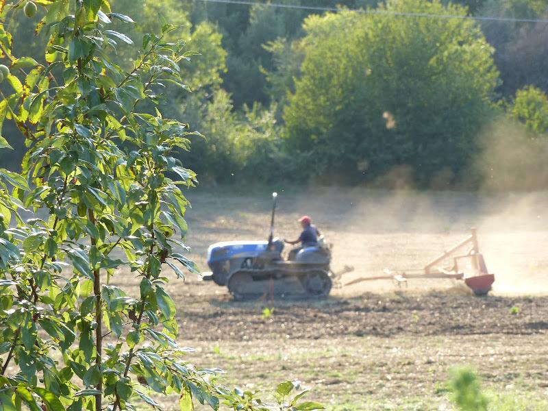 Macchine in agricoltura di carm_ian_