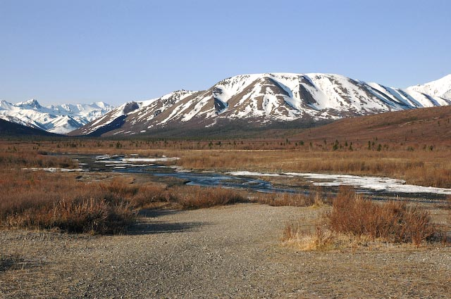Backpacking Denali in spring