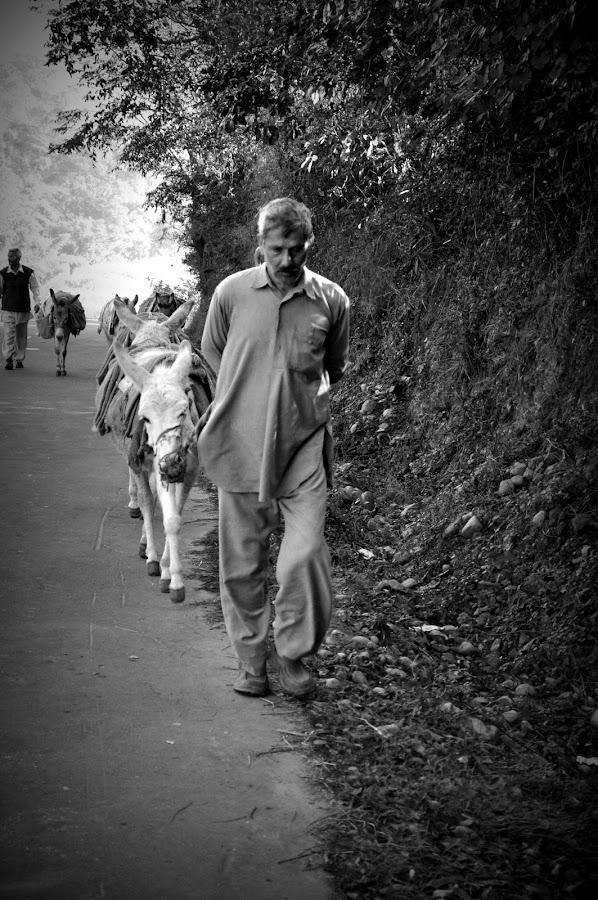 by Parvesh Rana - People Street & Candids