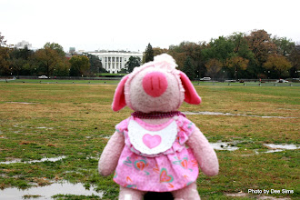 Photo: (Year 3) Day 134 -  Pippa for President (White House, Washington DC, USA)