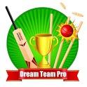 Dream Team Pro - My 11 Cricket Football Prediction icon