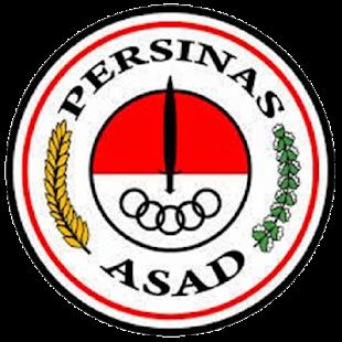 PERSINAS ASAD - náhled