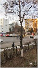 Photo: Turda - Calea Victoriei, Bloc B15 - Imagine de la geamul meu, Tei  - 2018.12.29