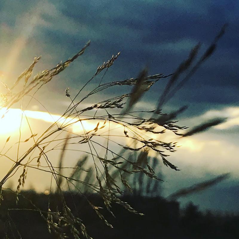 wind di cri64