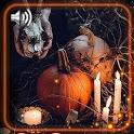 Halloween Theme Live Wallpaper icon