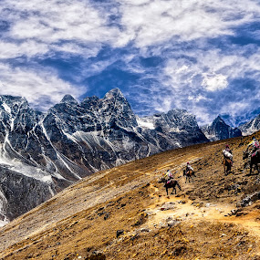 Freedom by Tien Sang Kok - Landscapes Mountains & Hills ( mountain, himalaya, nature, landscape, nepal )