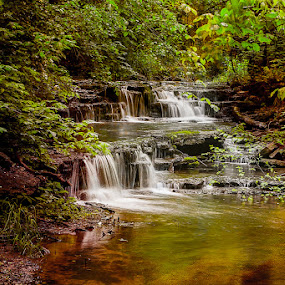 Cascading Falls by Eugene Linzy - Landscapes Waterscapes ( water, waterfalls, creek, cascades, spring, kentucky )