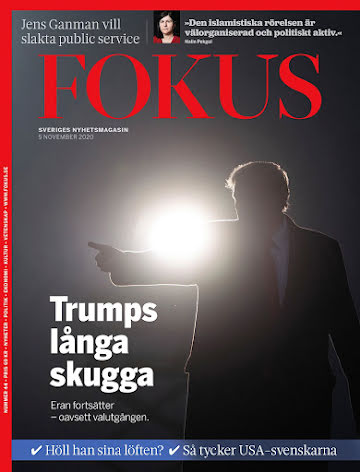 Fokus #44/20