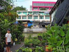 Photo: Marché aux fleurs -Thewet - Bangkok