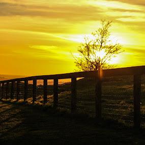 Setting sun by Raymond Fitzgerald - Landscapes Sunsets & Sunrises ( rock, cashel ireland rock of cashel sunset )