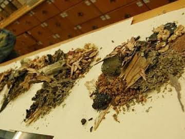 Chinese Traditional Herbs & Their Use