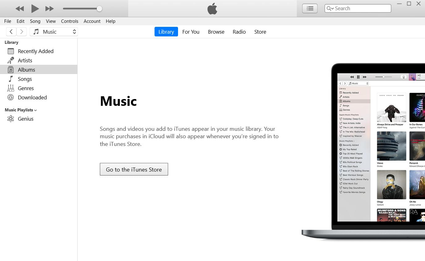 iTunes application