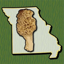 Missouri Mushroom Forager Map Morels Chanterelles Download on Windows