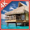ماليزيا جزيرة البقاء على قيد APK