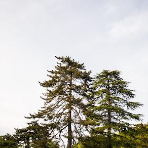 シエンタ NHP170Gのカスタム事例画像 いーどんさんの2021年05月07日01:57の投稿