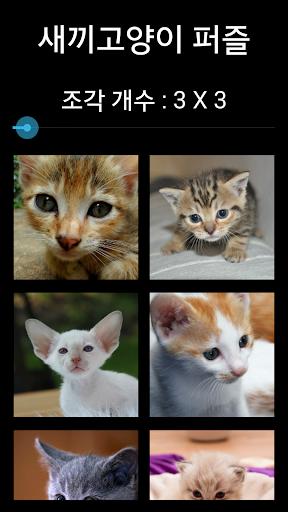 새끼고양이 퍼즐 맞추기: 직소퍼즐