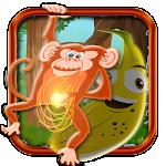 Fun Run Baboon Monkey
