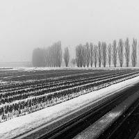 Nevicata lungo la strada di
