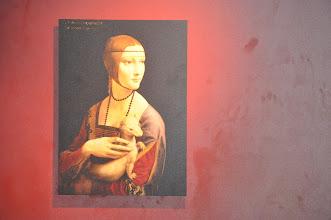 Photo: Dáma s hranostajem. Obraz je nyní vystaven v Polsku, v Krakovském Czartoryski Museum.